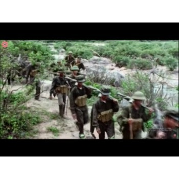 Lives of the jungle – THE VIETNAM WAR