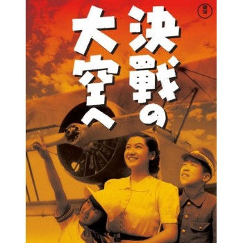 Toward the Decisive Battle of the Sky 1943 WWII